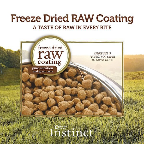 Raw quality dog food